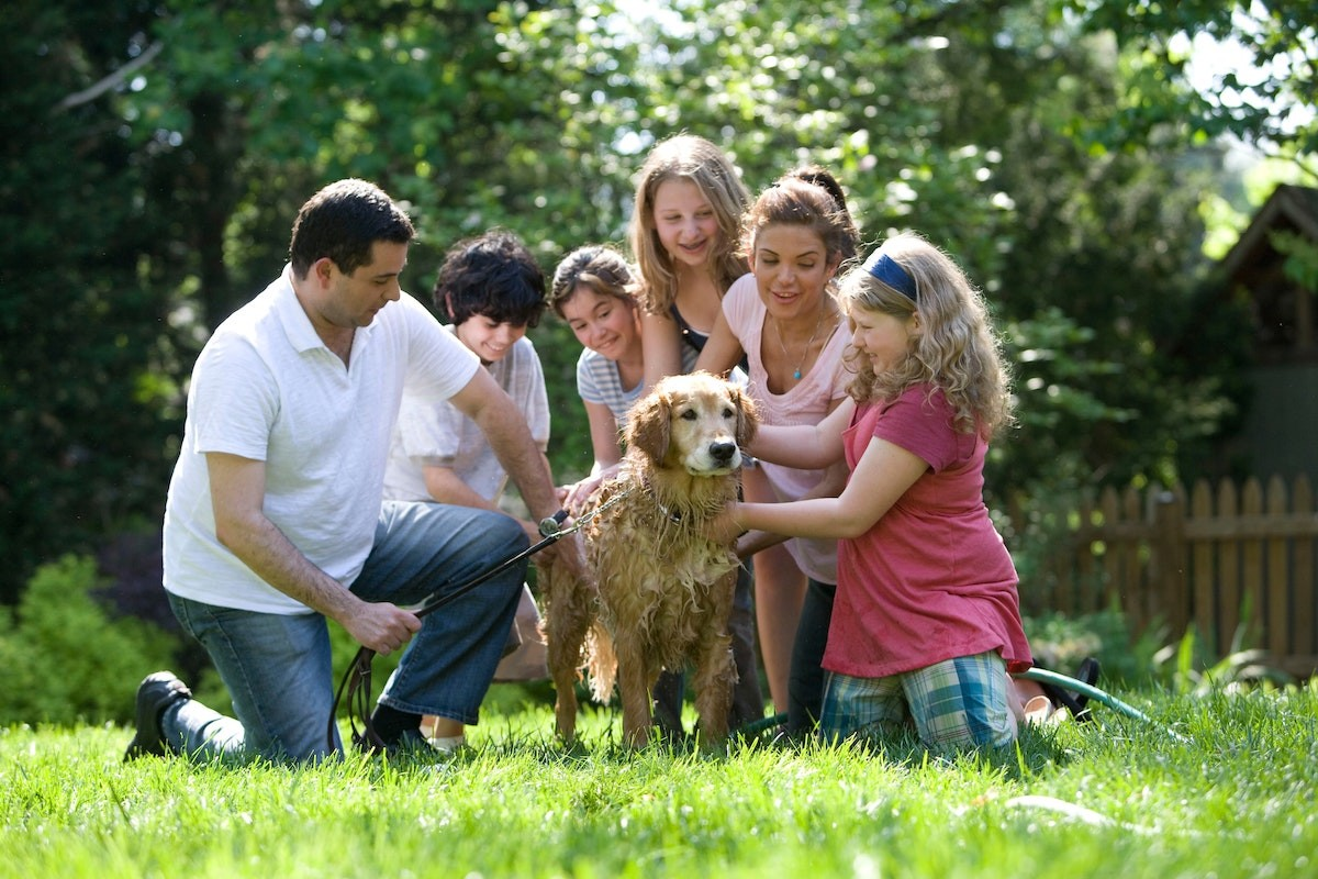 Financial Tips for Blended Families
