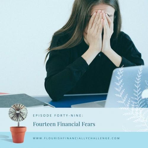 Episode 49: Fourteen Financial Fears
