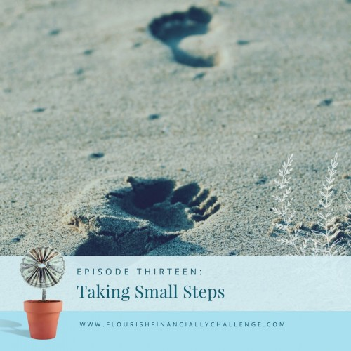Episode 13: Taking Small Steps