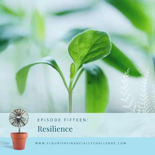 Episode 15: Resilience